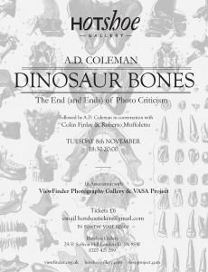 A. D. Coleman, Hotshoe lecture poster 2011