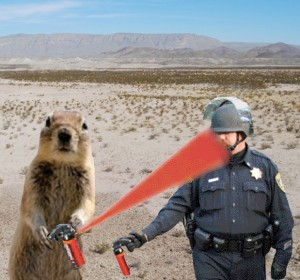 """Anonymous the Squirrel vs. Lt. John Pike,"" photocollage by A. D. Coleman, 2011. Based on a photo by Louise Macabitas."