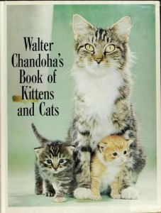 Walter Chandoha's Book of Kittens and Cats, 1963, cover.