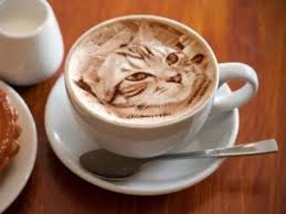 Ripple Maker cappuccino with cat image