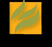 Mintpress News logo