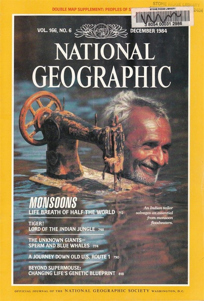 Steve McCurry, National Geographic, December 1984, cover