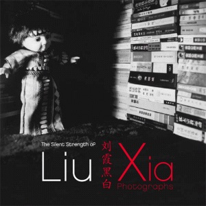 Liu Xia catalog, 2012, cover